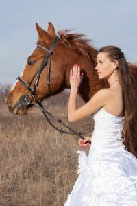 Állati esküvő